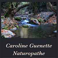 Caroline Guenette Naturopathe - Promotions & Rabais à Béarn