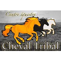 Centre Équestre Cheval Tribal - Promotions & Rabais à Saint-Onésime-D'Ixworth