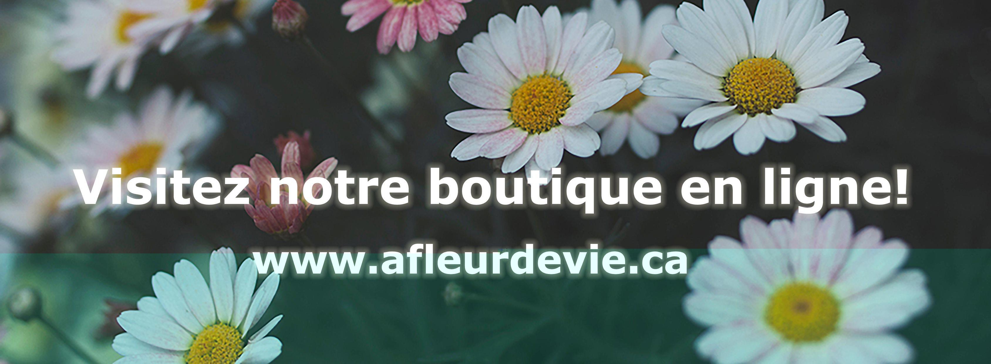 A Fleur De Vie