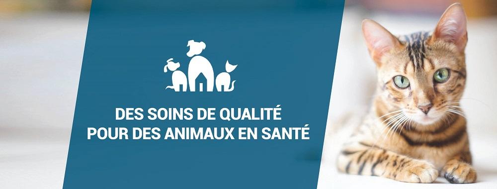 Hôpital Vétérinaire Carcajou En Ligne
