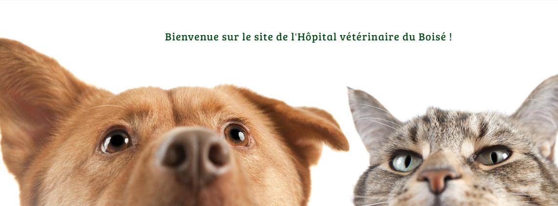 Hôpital Vétérinaire Du Boisé Inc. En Ligne