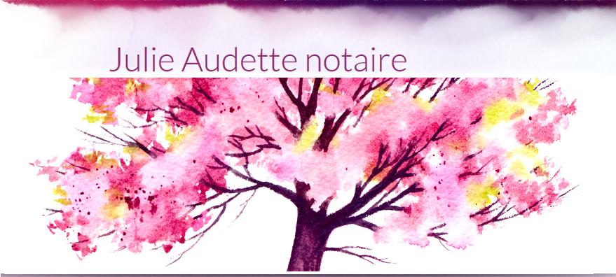 Julie Audette Notaire En Ligne