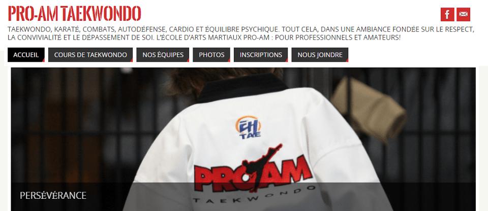 Pro Am Taekwondo En Ligne