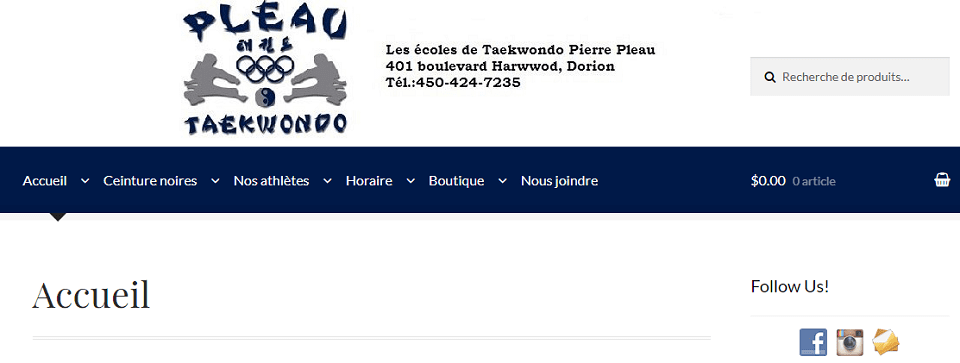 Taekwondo Pierre Pleau En Ligne
