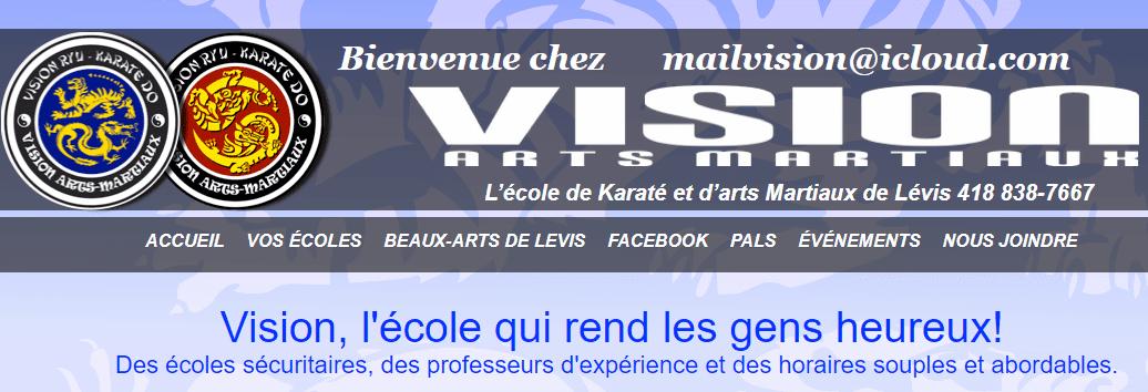 Vision Arts Martiaux En Ligne