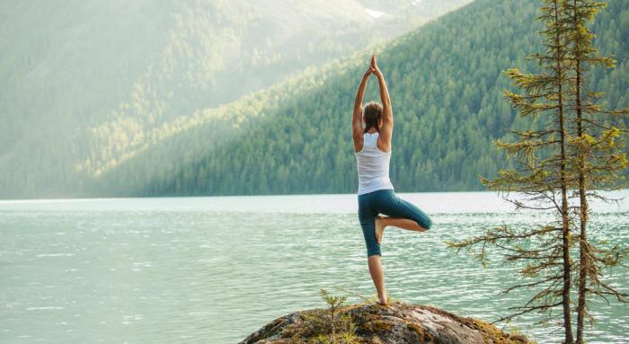 Yoga Invivo En Ligne