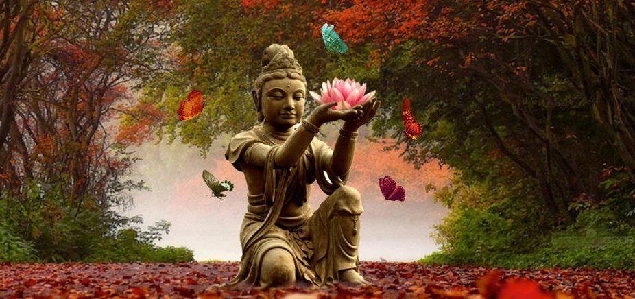Yoso Zen Yoga En Ligne
